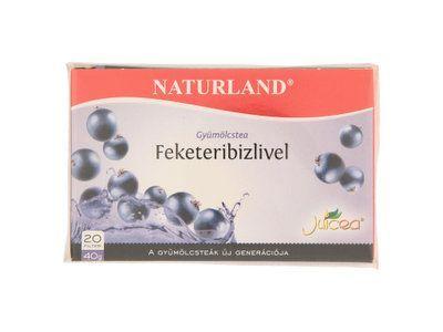 Naturland gyümölcstea feketeribizlivel 20x2g