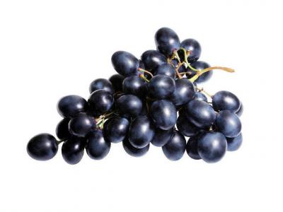 Fekete szőlő lédig