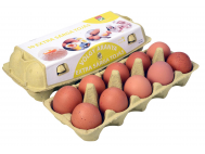 Pák-to extra sárga friss tojás M méret 10 darab