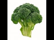 Brokkoli lédig
