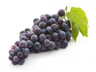 Kék szőlő lédig