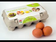 Pák-to friss tojás L méret 15db